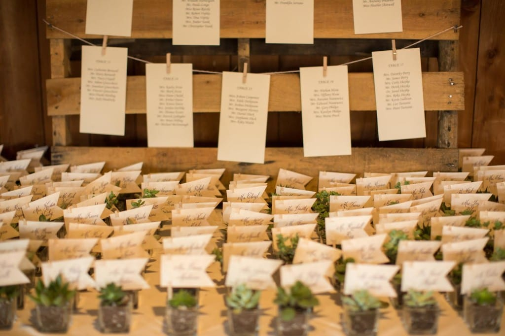 Succulent Place Cards